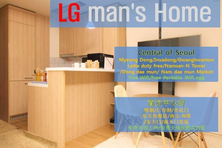 New_[LG man's home]#1 15f*Private APT - Jongno-gu - Apartment
