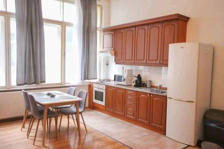 Central Cozy Danube apartment