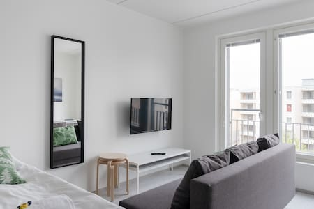 Studio Apartment with a Kitchenette