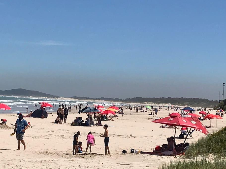 Long stretch of sunny beach days