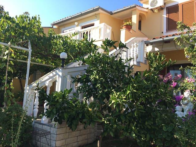 APARTMENT MIRA 2 - Pula - Wohnung