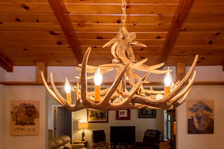 Antler chandelier