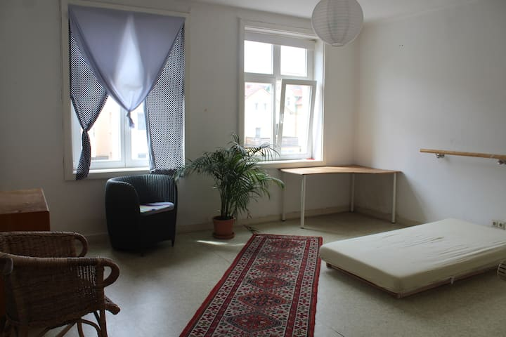 Room in students' appartment