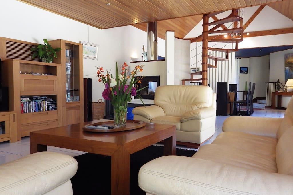 le salon et le coin cheminée