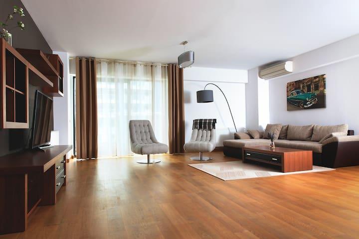 Comfortable huge flat in Pipera