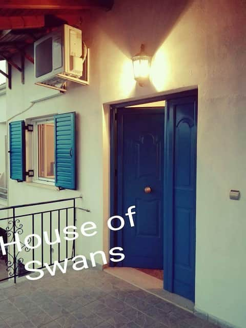 House of swans