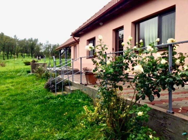 Quiet village house