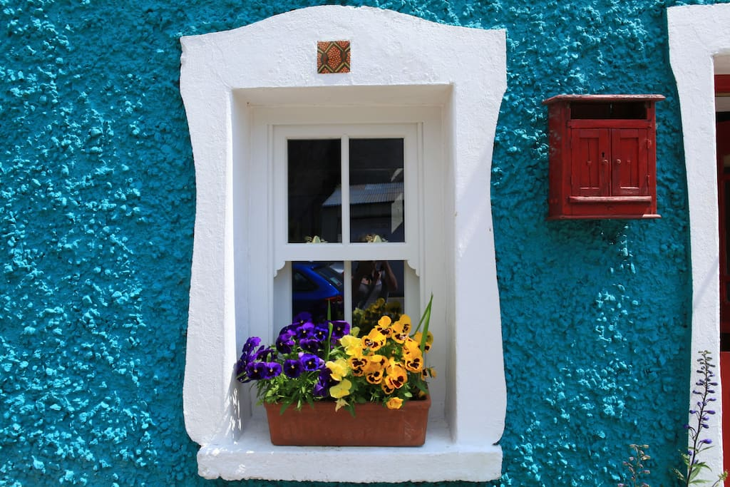 Summer flowers in the window