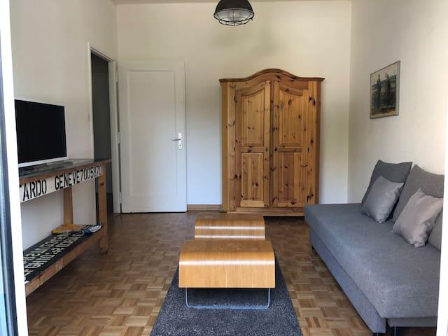 Salon avec canapé-lit 2 places