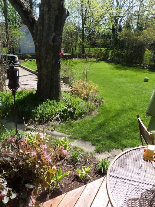 Deck and backyard flower garden