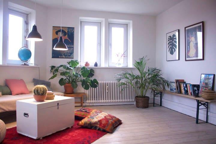 Stor lejlighed i Hunderupkvarteret - Odense - 아파트
