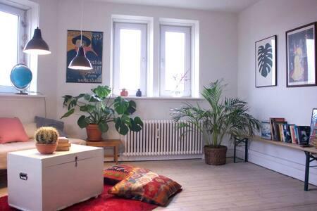 Stor lejlighed i Hunderupkvarteret - Odense