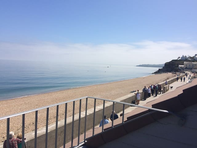 *New listing*Torcross apartment, large Balcony.