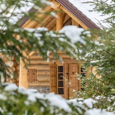 Divjake Log Home - Kraljica šume