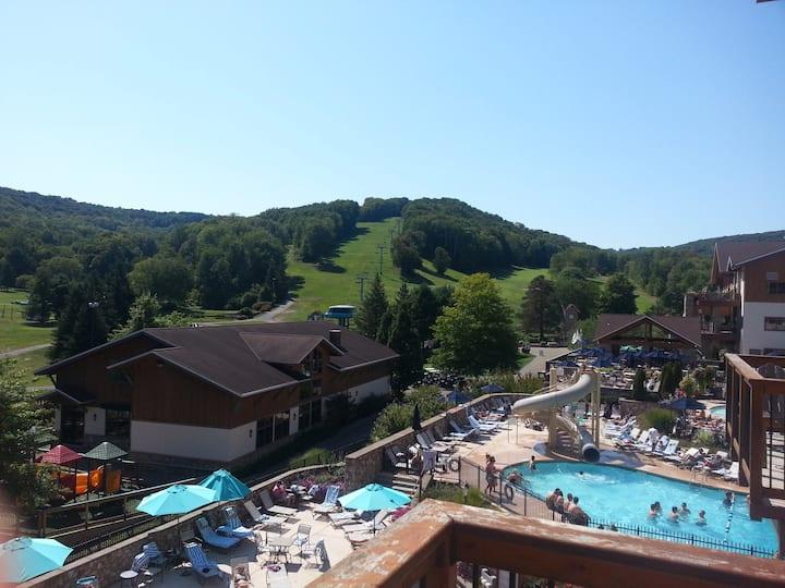 Beautiful four seasons and ski condo
