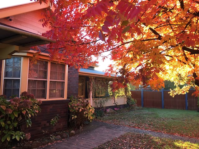 Armidale is renown for its rich autumnal tones.