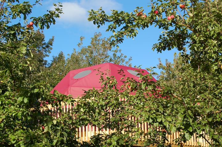 The Apple Dome at Cabot Shores