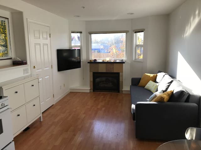 Clean and Cozy 1 Bedroom Apartment in Mt Pleasant