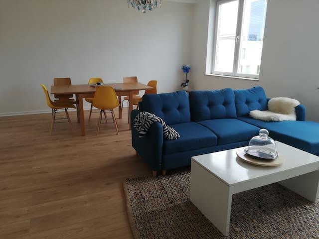 Appartement plein centre style scandinave