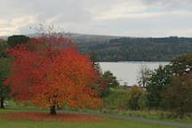 Autumn colours in Balloch Country Park