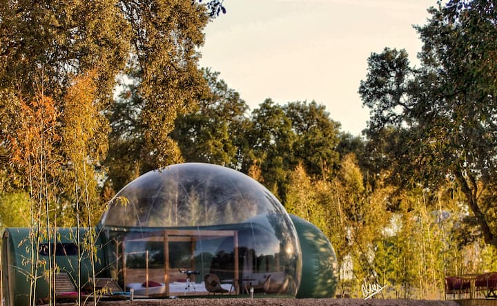 Sky Bubble Platón | El Toril Glamping Experience