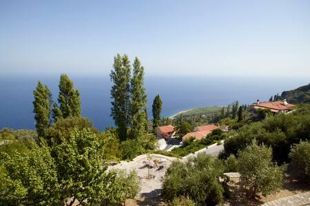 Ambelos - Der Balkon von Samos - Eleni