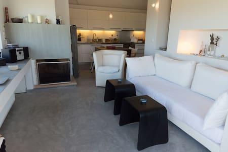 1SG18 Unique villa in beautiful Aegina - Egina