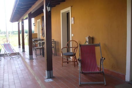 App.  Antico Casale X4  2bagni - Santa Domenica - Apartment