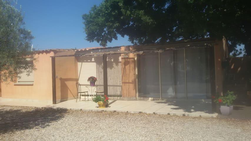 Maison individuelle - Saint-André-de-Sangonis - Talo