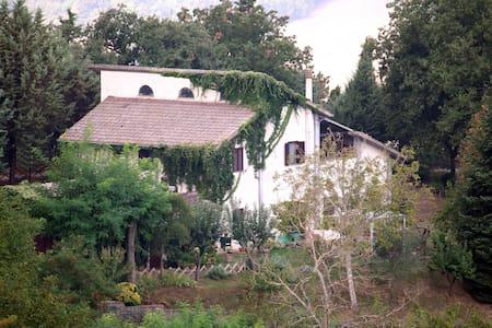 La casa di Cesarina - Celle Sul Rigo - Βίλα