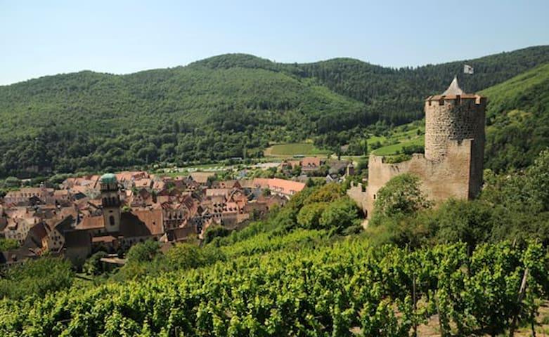 Kaysersberg 4/6 personnes classé 3 * tourisme