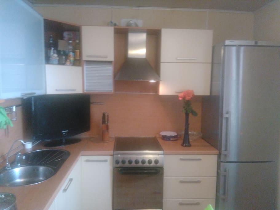 Кухня: холодильник, электрическая плита, ТВ, мойка.