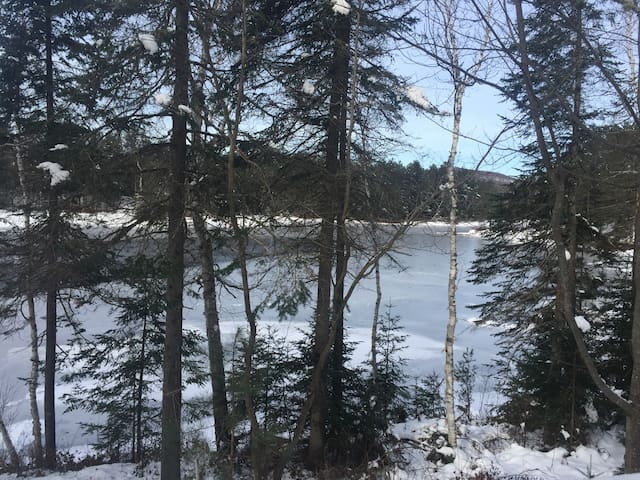 Lake front also in the forest. Newly furnished!!