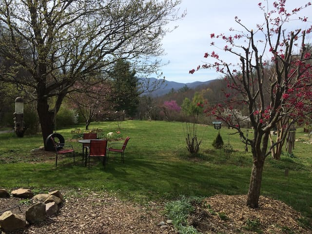 The Inn at Blackberry Blossom Farm - Unicoi - Apartment