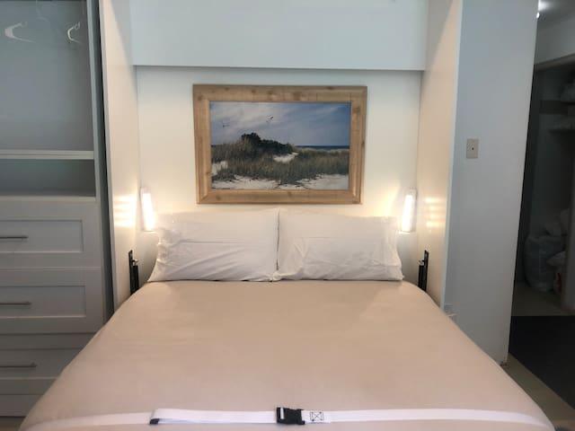 Queen Murphy Bed folded down