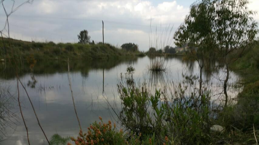 Pediaios river