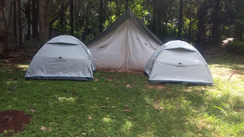 Tent Camping Elagiri