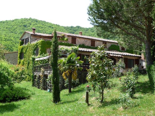 Casa al Fango, zwei typisch tosk. Natursteinhäuser - Travale - Dom