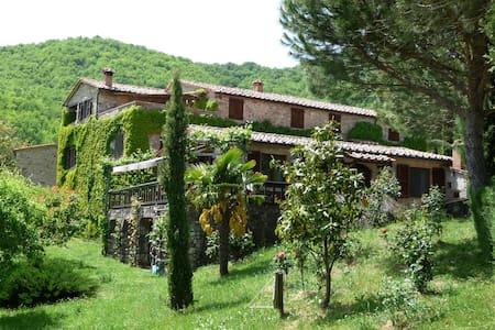 Casa al Fango, zwei typisch tosk. Natursteinhäuser - Travale