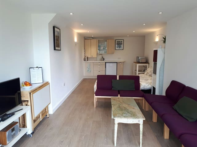Scandi-style basement studio near Sheffield Uni - Sheffield - Apartment