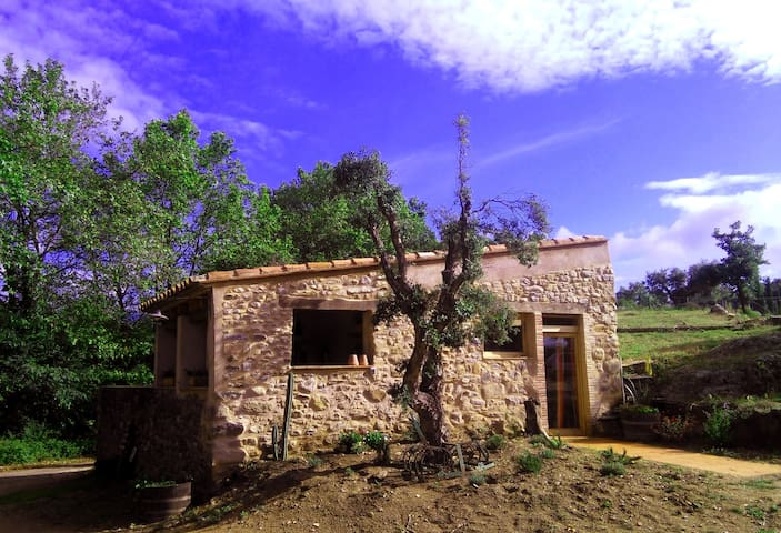 Charming farm cottage in the nature - Vilartolí - Casa
