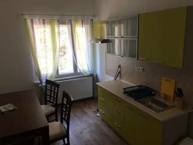 Byt v lázeňské čtvrti Teplic - Teplice - House
