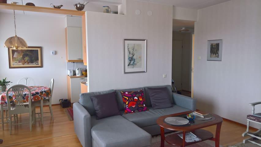 Olohuoneessa divaani vuodesohvamekanismilla. (140 cm)