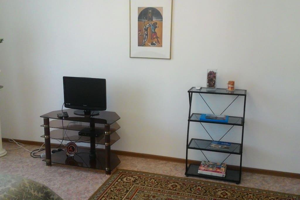 Телевизор, книжная полка
