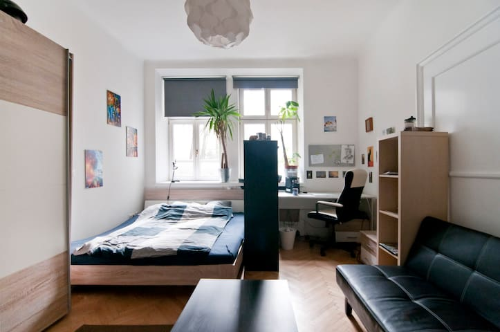 Cozy Room Downtown - Vienna - Pis