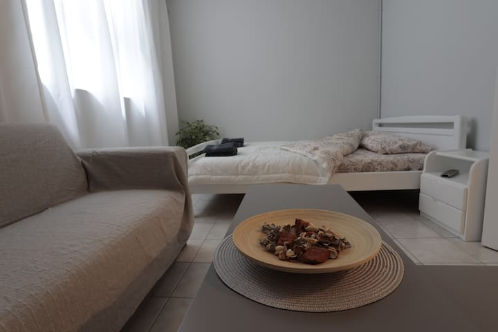 Cool apartment with subway vincinity