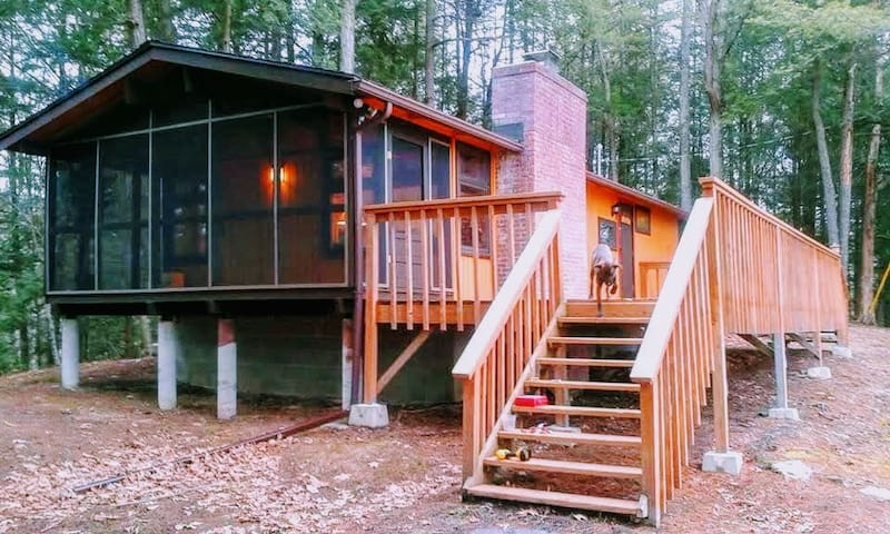 Private and cozy cabin with Lake Bomoseen views!