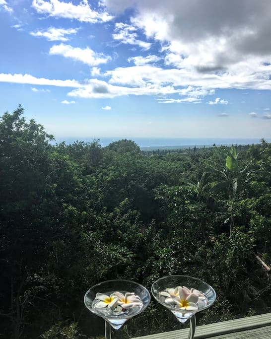 Lanai: Beautiful lush foliage, bird song, and an ocean crest view welcome you