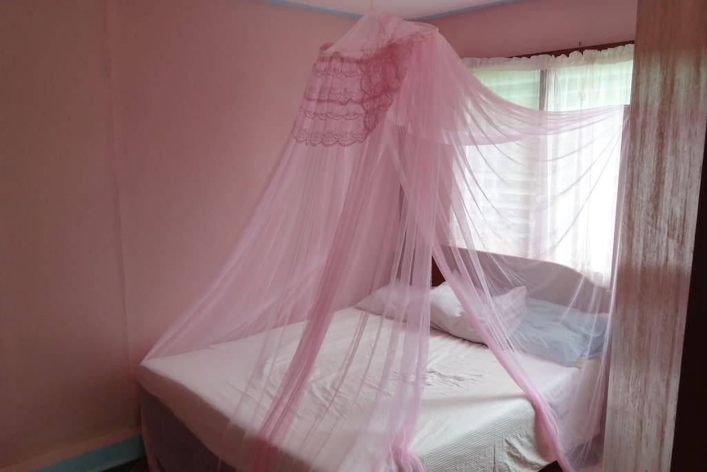 This is your room. The choice of colors is not mine :) I will change the net if you insist but I cannot promise to repaint the walls.