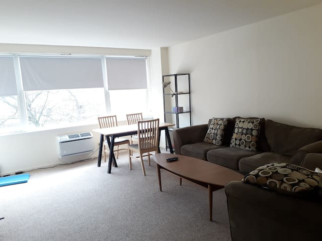 Spacious 1BR in downtown Evanston